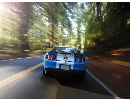 ���� ford mustang gt500 5