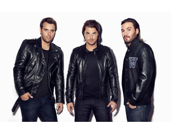 Фото swedish house mafia 2