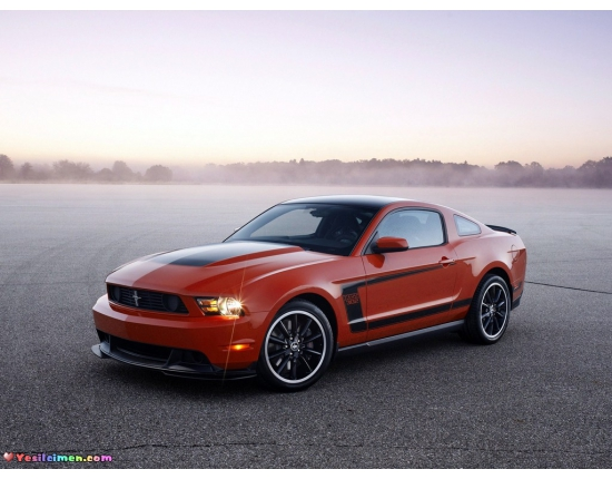 Фото ford mustang boss 302 5
