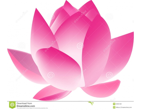 Photo lotus flower free 4