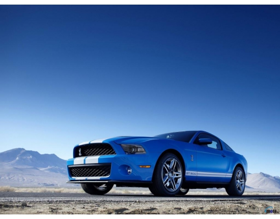 Фото ford mustang shelby gt500 2