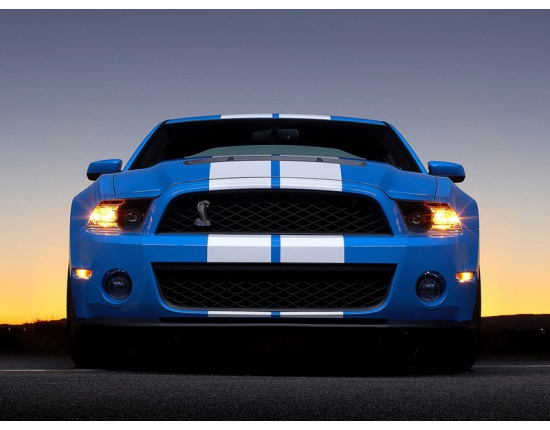 Фото ford mustang shelby gt500 3